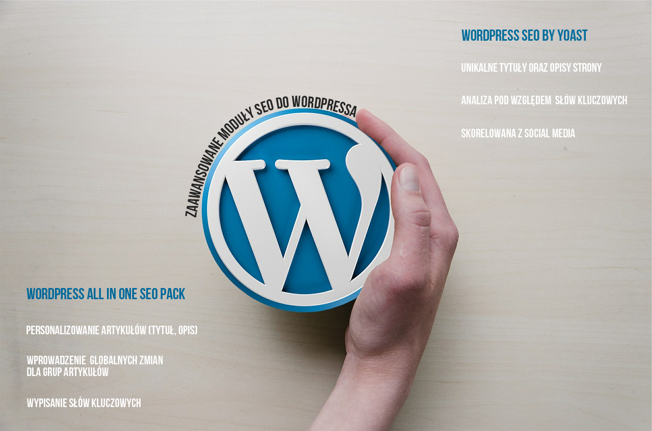 Moduły SEO Wordpress