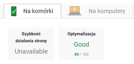 Screen szybkość działania strony